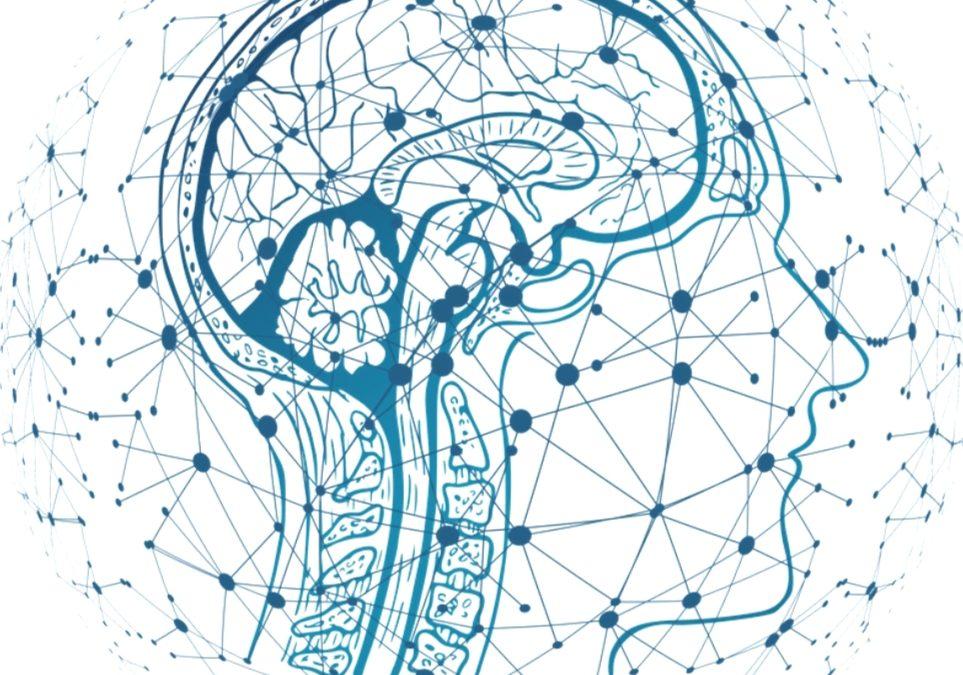 Espacio en Cadena SER Radio: Neurociencia